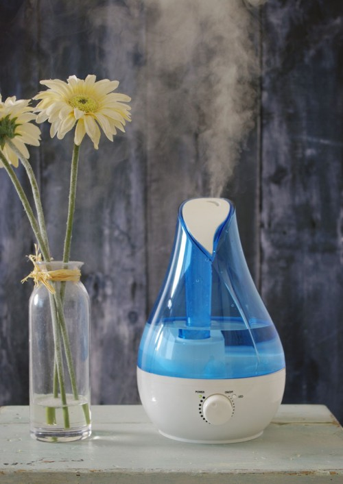 Blue Rose Ultrasonic Humidifier with cool mist