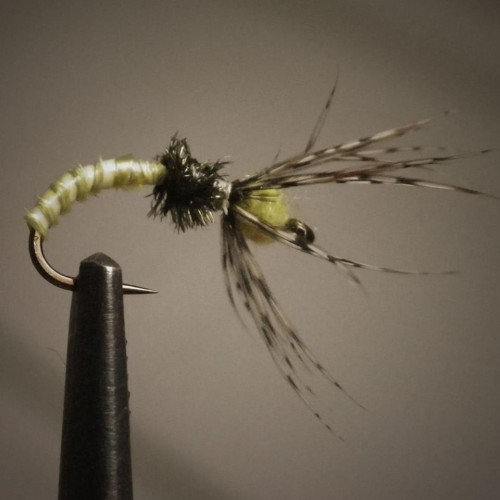 Tenkara Fly